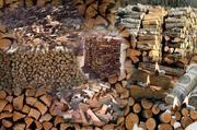 Продам дрова,  обрезки,  опилки,  навоз