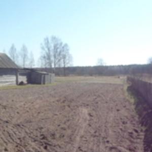 Продам дом рядом с заповедником (возможен обмен на квартиру в Минске)!