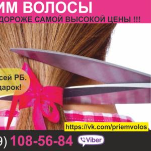 Продать волосы Витебск. Натуральные волосы. Купим волосы по все Беларуси.