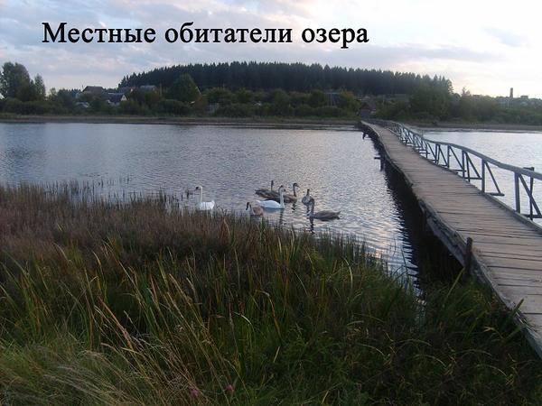 Жилой кирпичный дом на берегу озера.  8